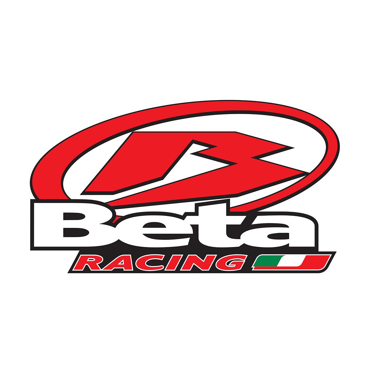 Beta Motor